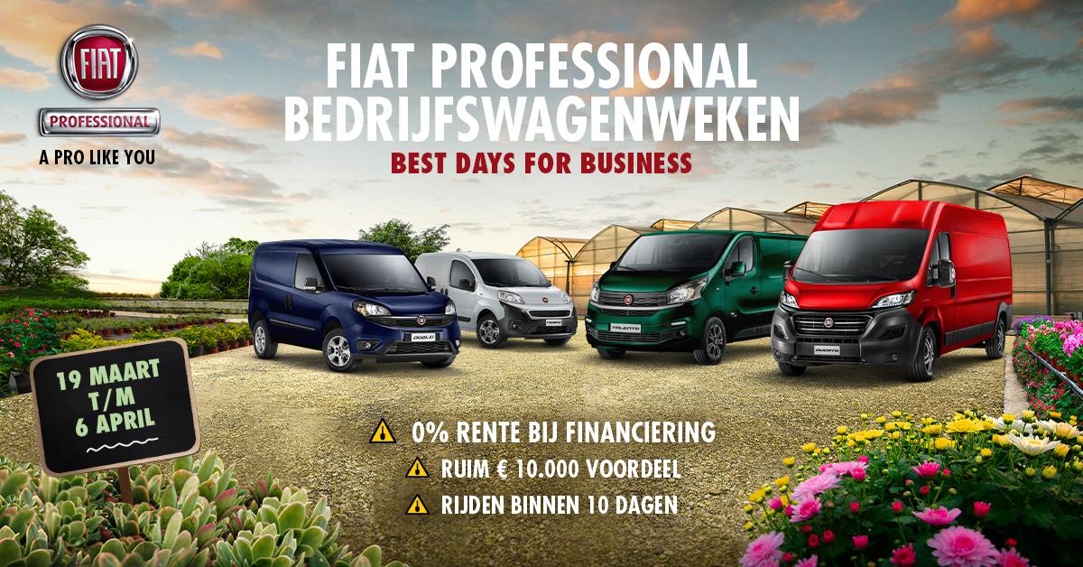 Afbeelding voor Fiat Bedrijfwagen weken